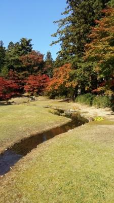 Hiraizumi by Nan
