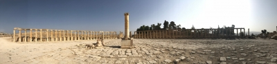 Jerash Archaeological City (Ancient Meeting Place of East and West) (T) by Michael Novins