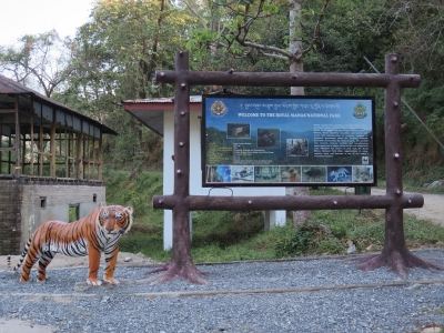 Royal Manas National Park (RMNP) (T) by Zoë Sheng