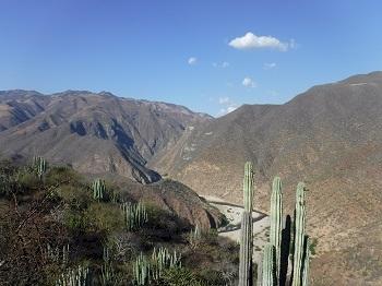 Tehuacán-Cuicatlán Valley by Frédéric McCune