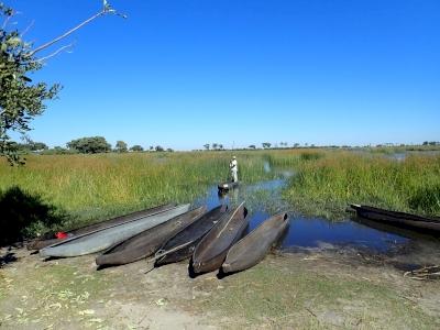 Okavango Delta by Svein Heltberg