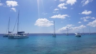 Bonaire Marine Park (T) by Zoë Sheng