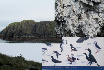 Breiðafjörður Nature Reserve (T) by Zoë Sheng