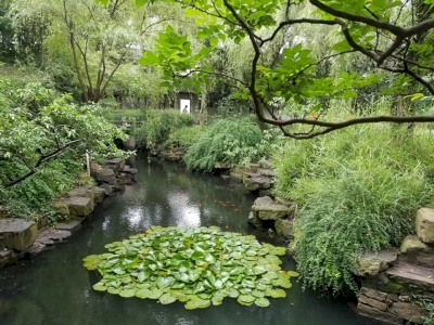 Classical Gardens of Suzhou by GabLabCebu