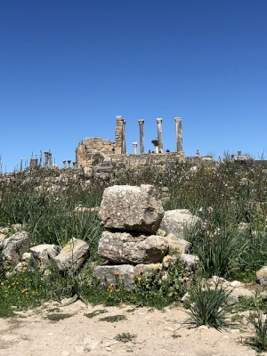Volubilis by Travel Addicts