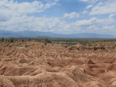 Tatacoa Desert (T) by Zoë Sheng