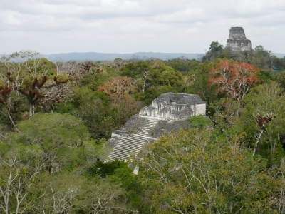 Tikal National Park by Frédéric M