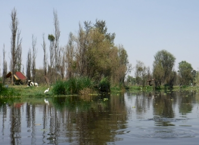 Mexico City and Xochimilco by Frédéric M