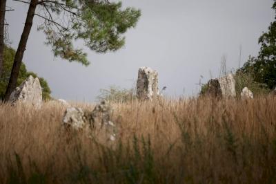 Sites mégalithiques de Carnac (T) by Nan