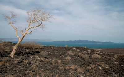 Lake Turkana by Richard Stone