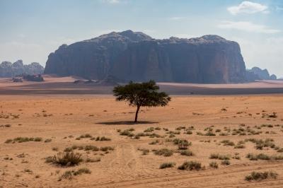 Wadi Rum by Ilya Burlak