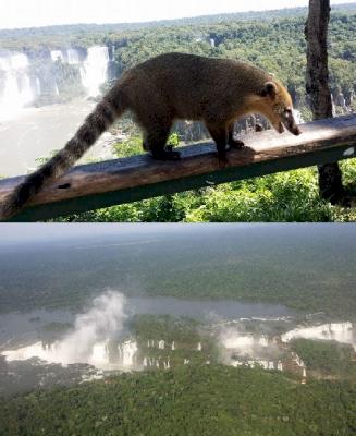 Iguacu by GabLabCebu