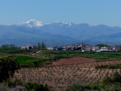 La Rioja and Rioja Alavesa Vine and Wine Cultural Landscape (T) by Clyde