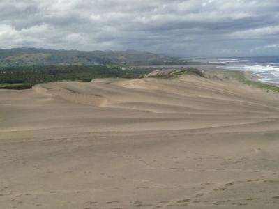 Sigatoka Sand Dunes (T)