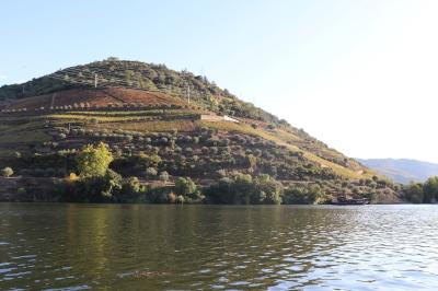Alto Douro by Jakob Frenzel