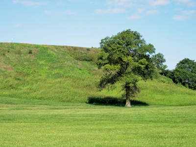 Cahokia Mounds by Jay T