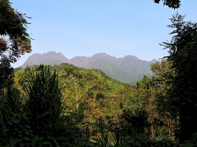 Rwenzori Mountains