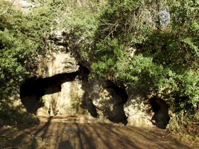 The Neanderthal fossil sites of Wallonia (T) by Els Slots