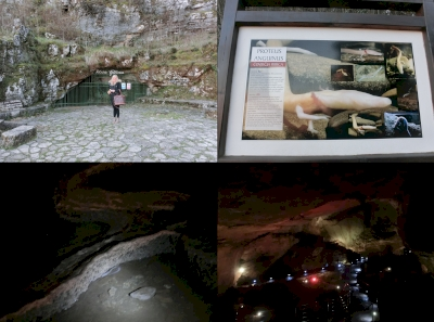 Vjetrenica cave (T)