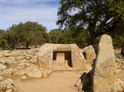 Art and Architecture in the Prehistory of Sardinia. The domus de janas. (T) by Matejicek