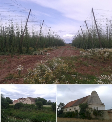Žatec – the Hops Town (T) by Matejicek