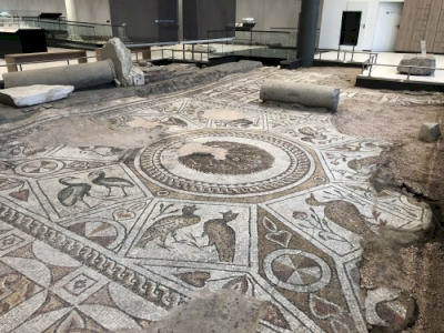Bishop's Basilica and Late-Antique Mosaics of Philippopolis, Roman Province of Thrace (T) by Els Slots