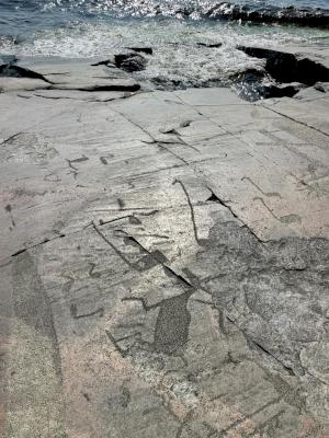 Petroglyphs of the Lake Onega and the White Sea by Martina Ruckova