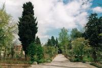 Botanical Garden, Padua by David Berlanda