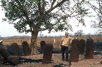 Stone Circles of Senegambia by Solivagant