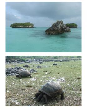 Aldabra Atoll by Solivagant