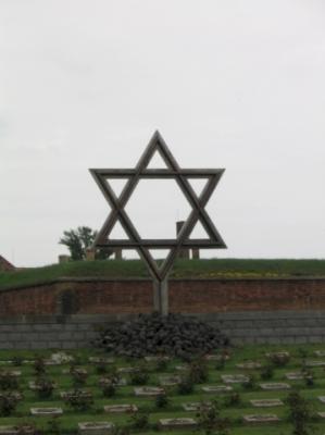 The Fortress of Terezín (T) by Jakob Frenzel