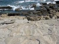 Dinosaur Ichnite Sites of the Iberian Peninsula (T) by Els Slots