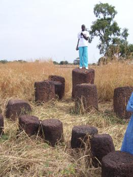 Stone Circles of Senegambia by Ian Cade