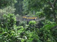 Kakum National Park (T) by Els Slots